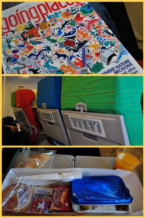 inside the flight