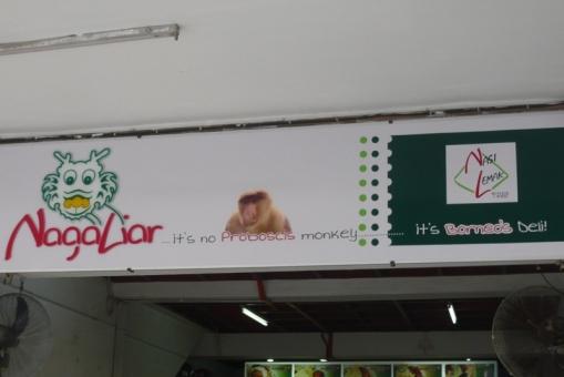 it's no proboscis monkey, it's Borneo's Deli!!