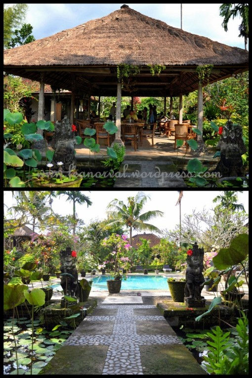 Top: the open area where we had breakfast    Bottom: View from where i sat during breakfast overlooking the swimming pool. very green, i like!
