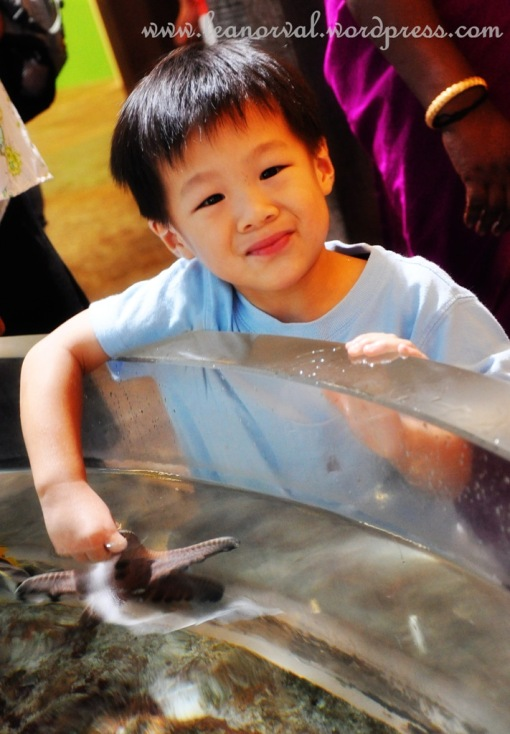 cute boy at Underwater World Sg. during my recent visit :-) he was holding a starfish and the father was taking a video of him and he gave me this smile! :-)